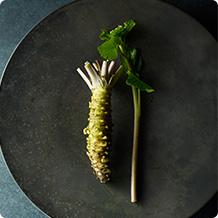 History of wasabi