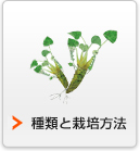 種類と栽培方法